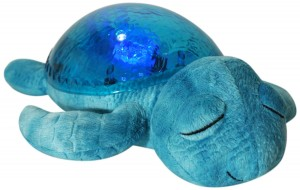 Tortue Tranquil